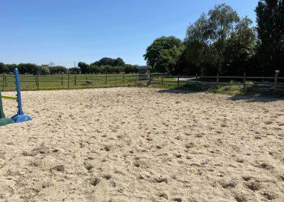 Accueil chevaux 7